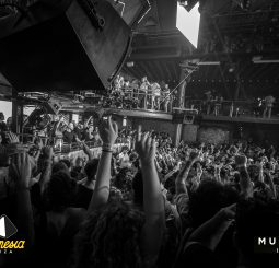 music on amnesia ibiza