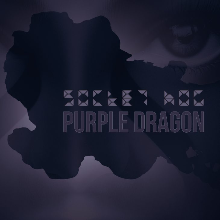 Socket Hog – Purple Dragon – Bakroom – Recommended Album