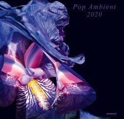 Pop Ambient