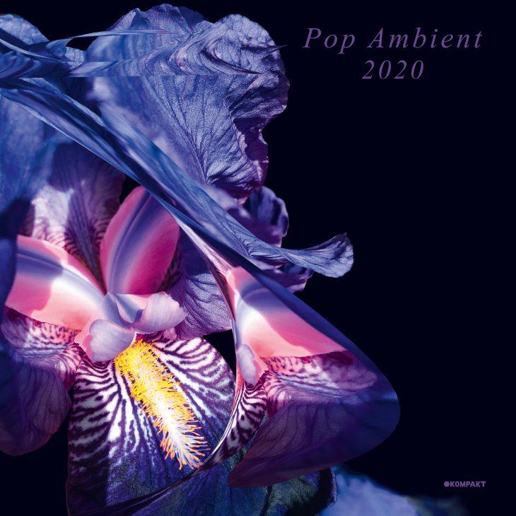 POP AMBIENT CELEBRATES 20 YEARS – KOMPAKT